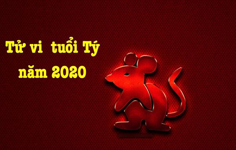Tử vi 2020 cho tuổi Tý