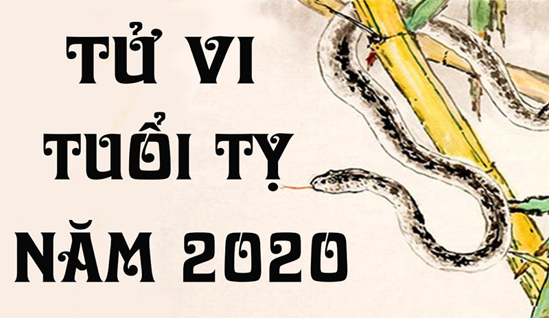 Tử vi tuổi Tỵ năm 2020